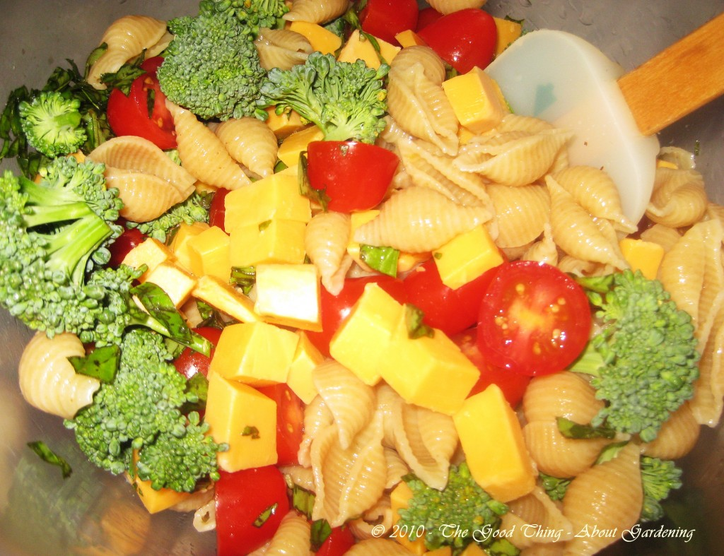 Basil, broccoli, tomatoes, pasta shells.