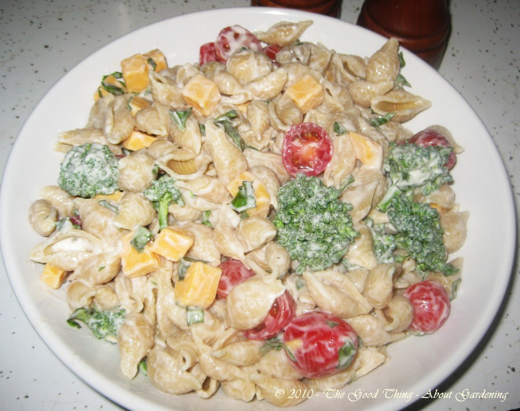 Colorful broccoli, tomato, basil pasta salad.