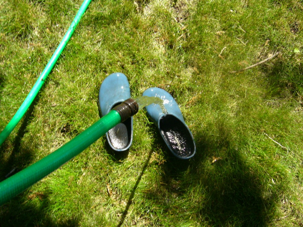 Cleaning (and cooling) my garden clogs and feet.