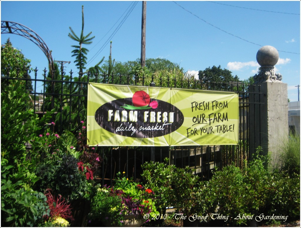Farm Fresh Produce Delivered Daily