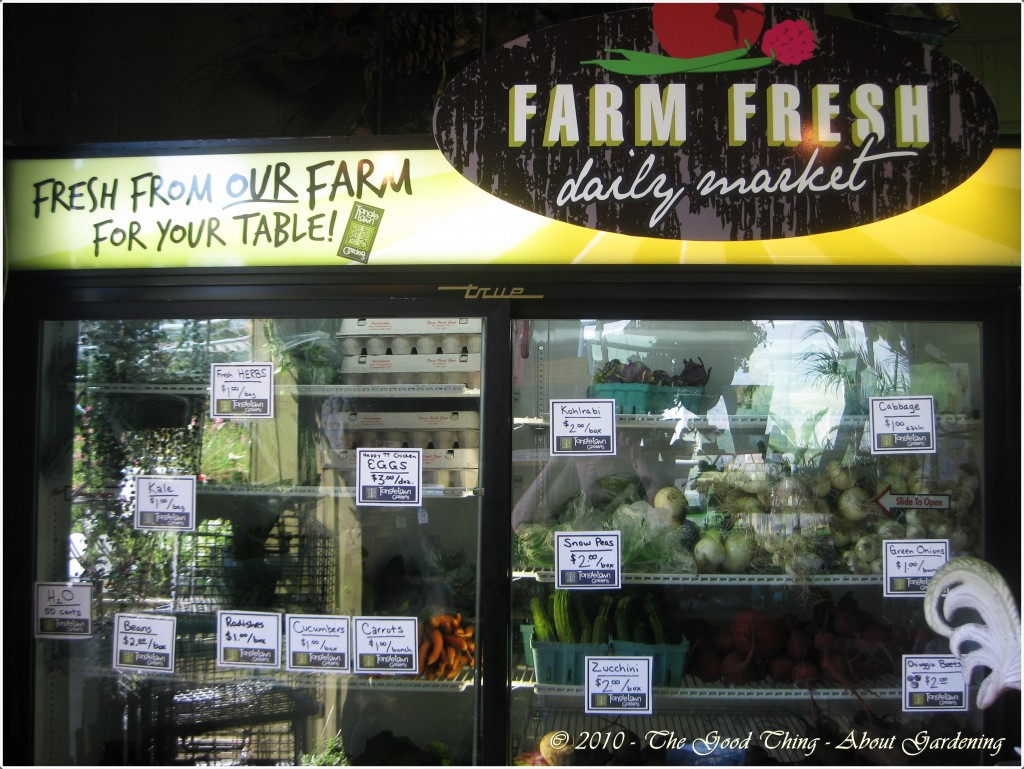 Farm Fresh Produce Available for Purchase