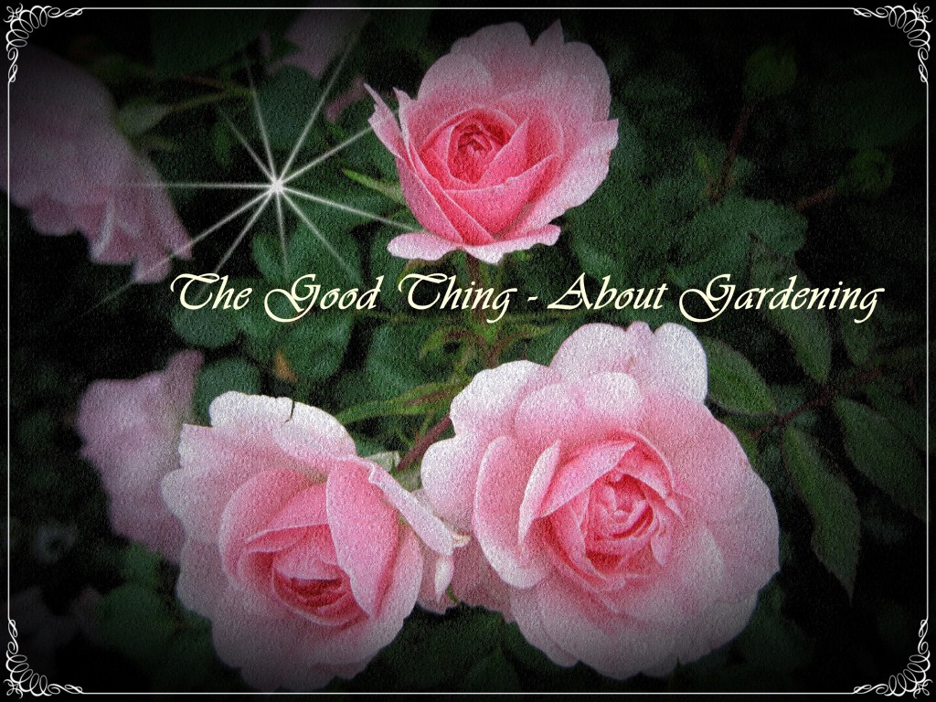 The Good Thing - About Gardening Logo