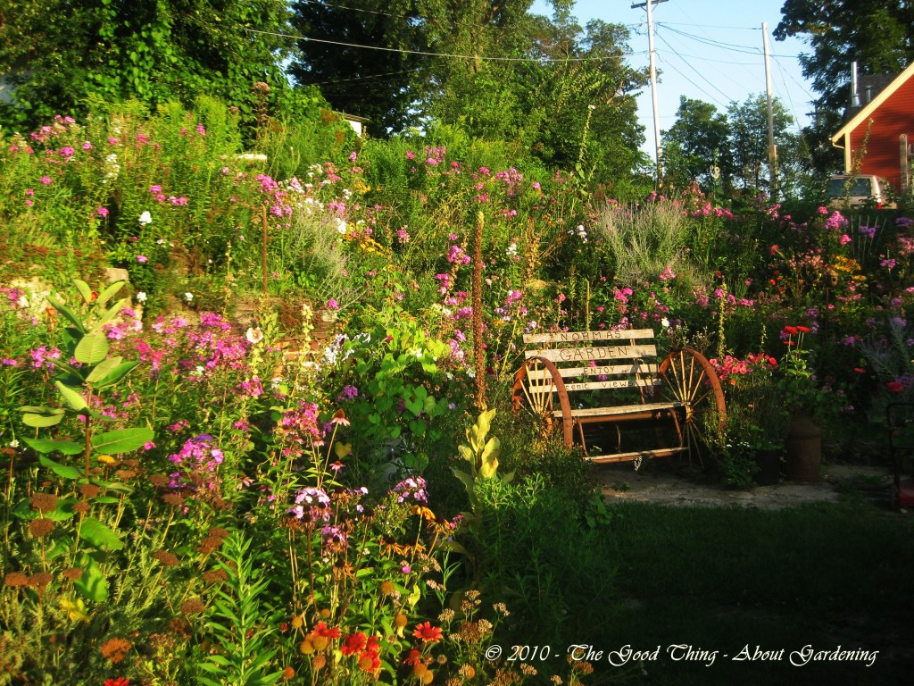 Norma keeps a beautiful perennial garden.
